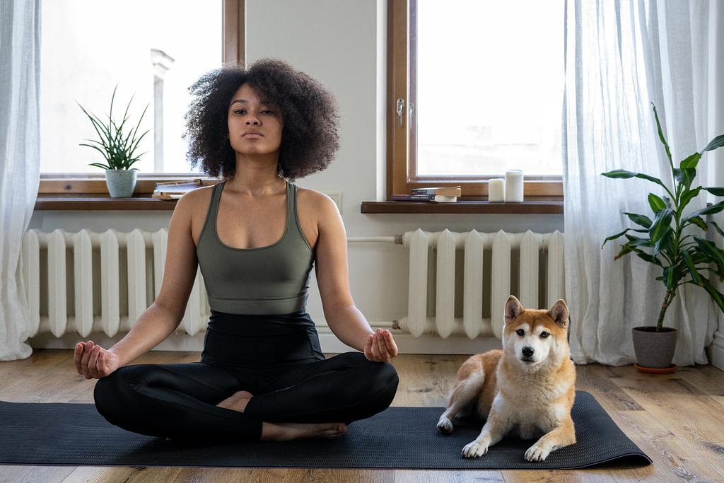 Hund und Frauchen beim Yoga. Danach gibt es leckeres Hundefutter gegen Haarausfall.